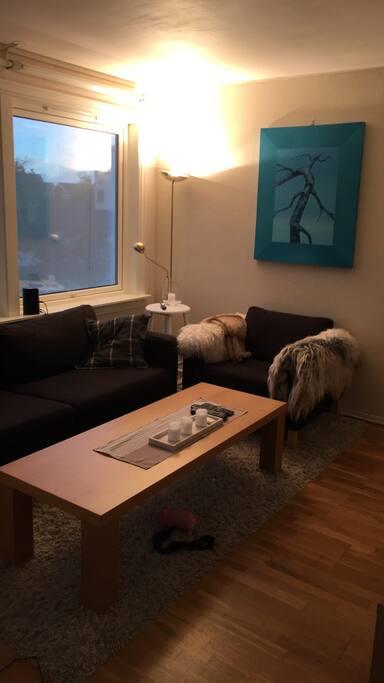 Koselig tv-stue