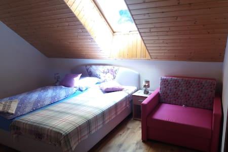 Vila Park VYHNE  SLOVAKIA pink double room