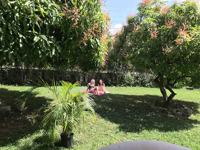Guests relaxing on the front lawn by the mango trees