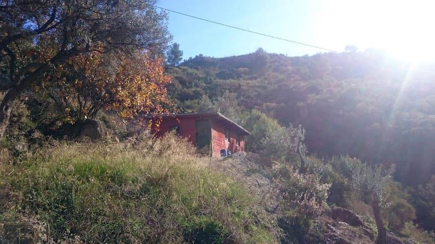 Wooden Cabin near Otivar