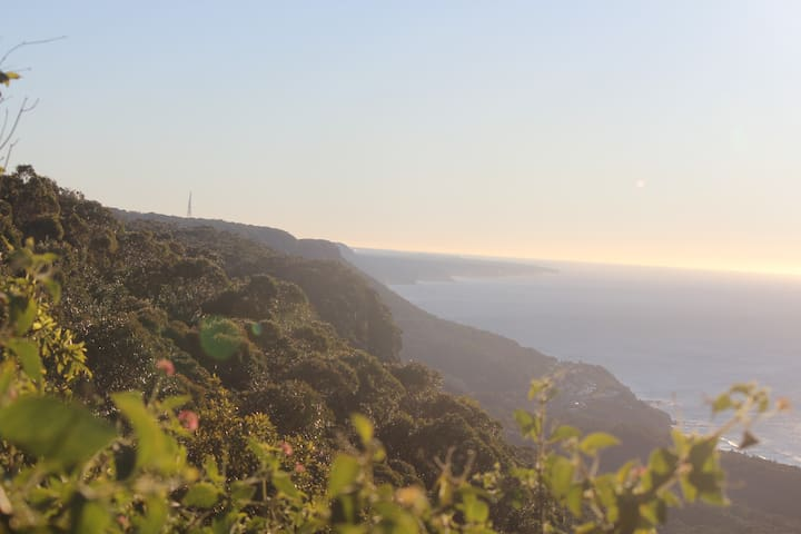 Austi Escarpment - 450m to Beach ! - Austinmer - Bed & Breakfast