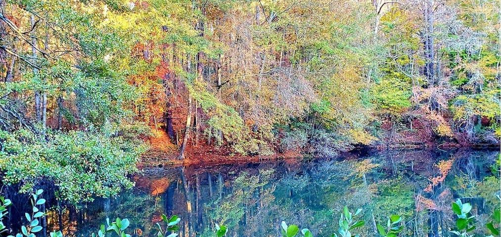 Huge Private Lakeside Retreat - (Hickory Lodge)