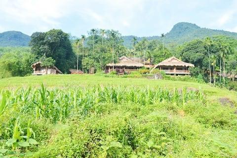 Habitación privada Pu Luong en Stilt House & Breakfast