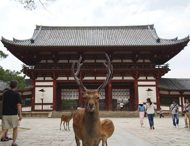 Nara GREAT Location :)COMFORTABLE bed ;) COZY room
