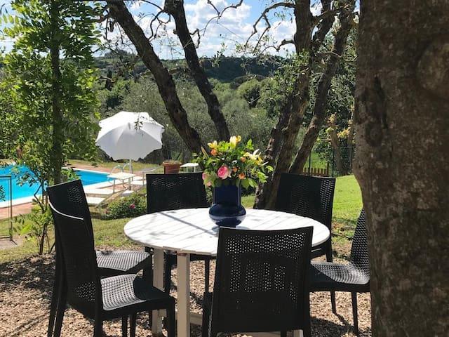 Pasqui Villas : Tribbio private house pool