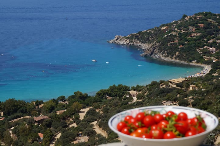 """Another view from the terrace at the time of the """"aperitif"""""""