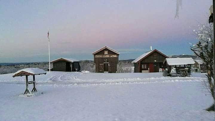 Kozy cabin at Golsfjellet.