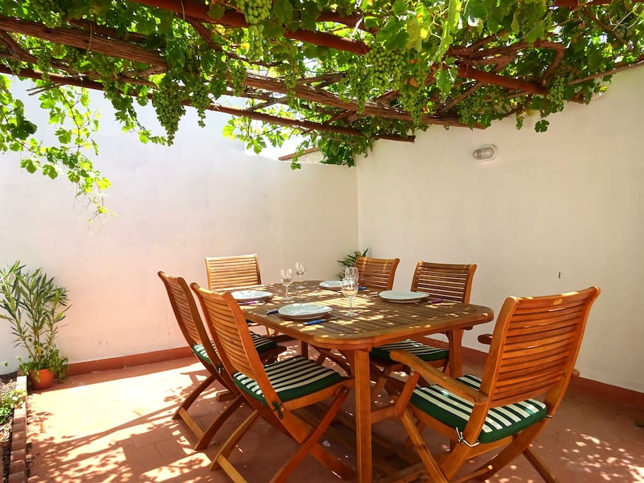 Lower terrace, with dinner table shaded by the vine and plenty of space for the BBQ.