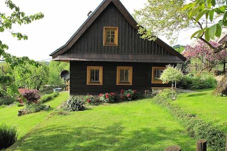 Podkroví valašské dřevěnice - House