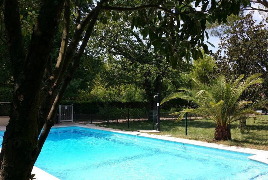 à l'autre bout du parc : la piscine (12m x 6m), avec clôture et alarme de sécurité,