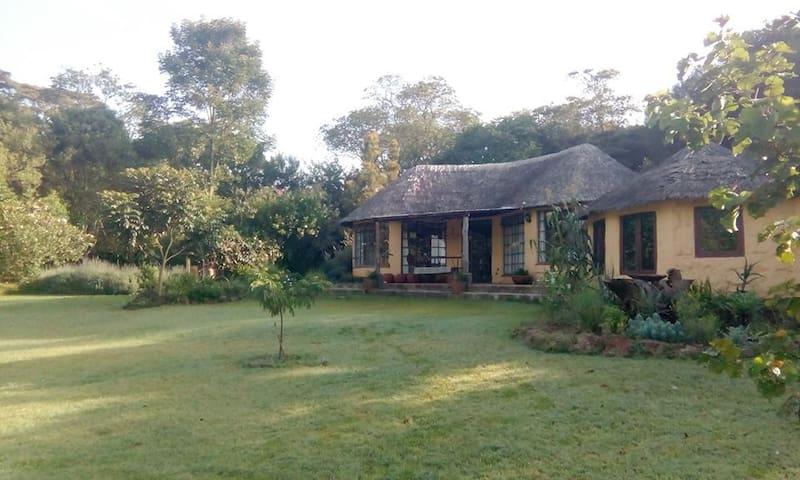 Bright cottage in private garden with verandah