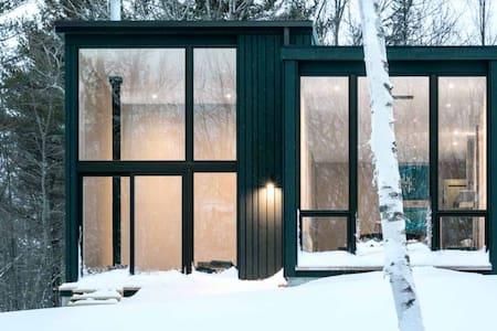 Green Camp | Modern Retreat Among The Pines
