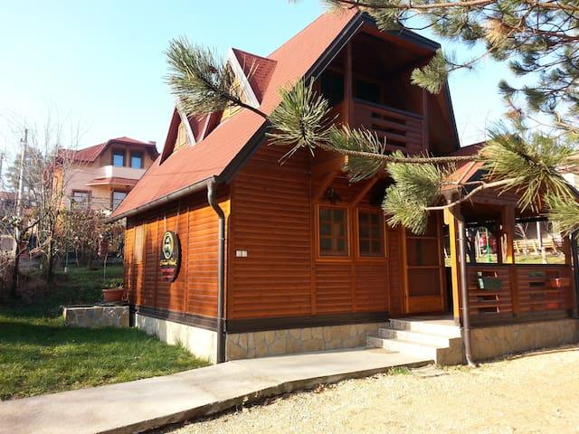 Chalet Brvnara Vrdnik - Vrdnik - Chalet
