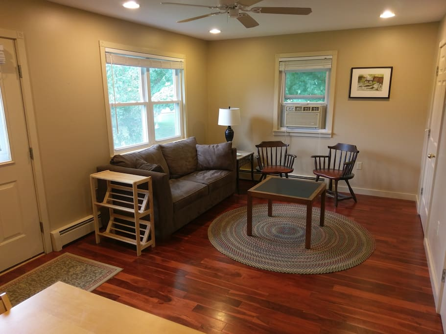 Living space/pull-out futon