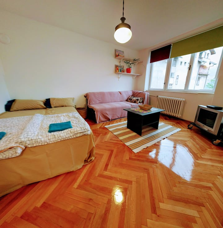 Cute apartment Dream located in city center