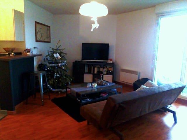 Appartement T2  dans résidence calme avec piscine - Frouzins - Apartament