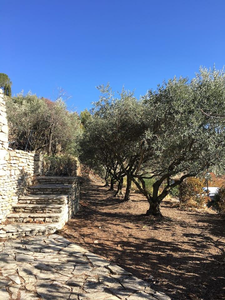 Location maison Bonnieux Luberon Provence