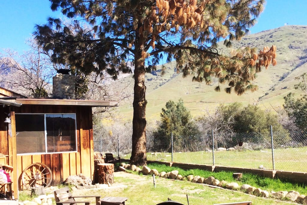 Front yard with mountain views out every window. Very secluded and peaceful.