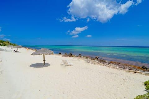 Luxury quiet beachfront w/coral reef snorkeling