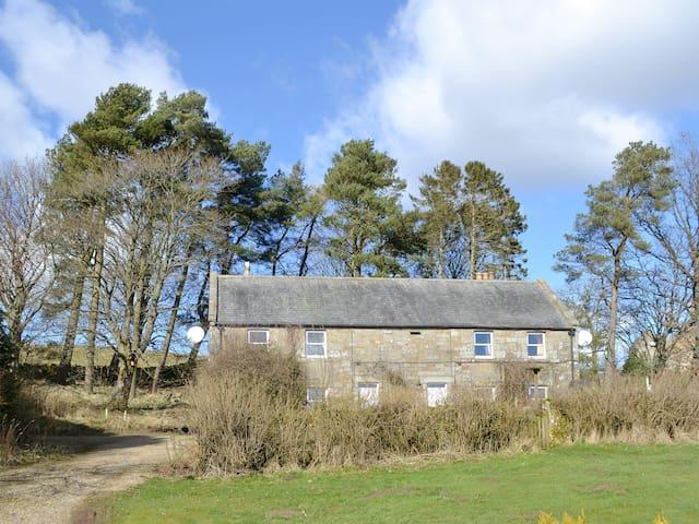 Birch Cottage- 15841 (15841)