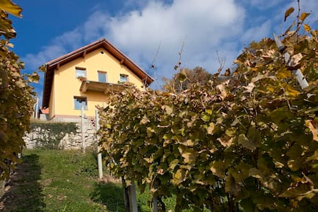Vineyard cottage Ucman - Otočec