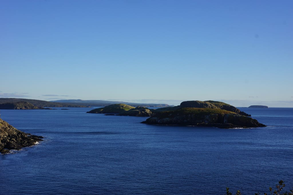 Unwind with a view of the Witless Bay Ecological Reserve