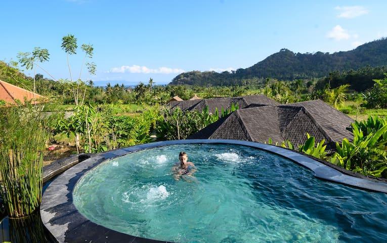 Luxury Eco Wellness Resort Villa 3
