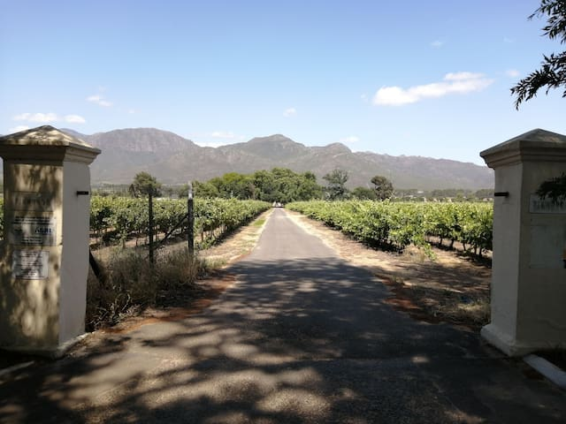 Firwoods Cottages - Farm Stay - Chenin Blanc