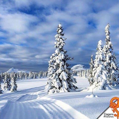 Wonderful cabin in montain,Norway. - Øystre Slidre, Valdres - Houten huisje