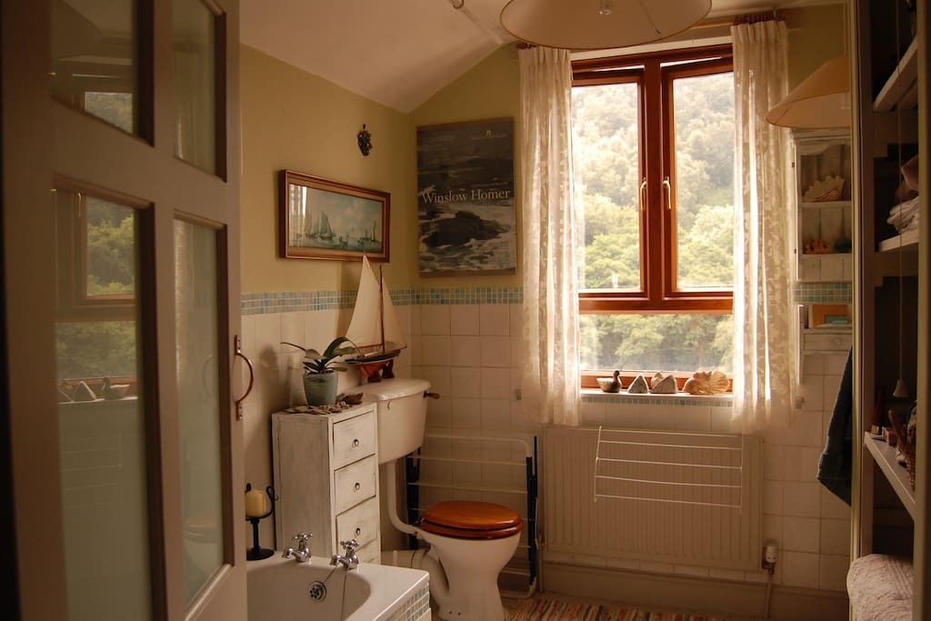 Bathroom with a view too!