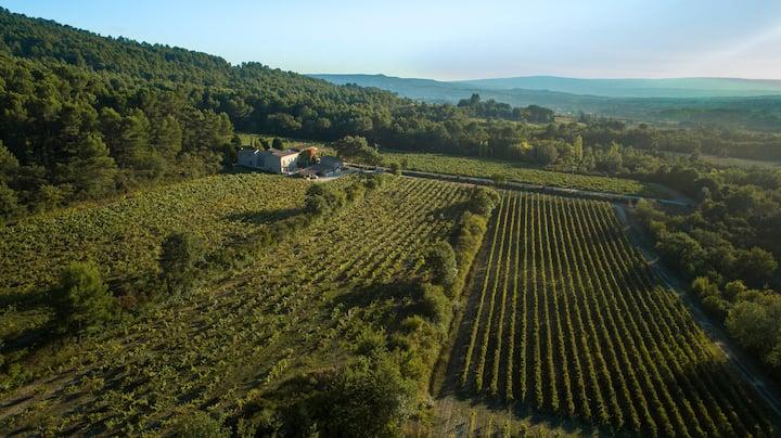Gite du Vignoble Château Saint Pons en Provence