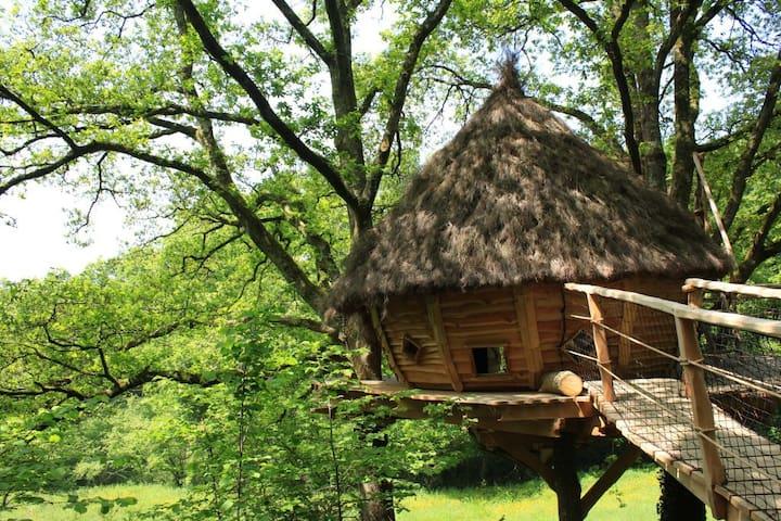 Cabane cocon, séjour romantique piscine et jacuzzi - Savigny - บ้านต้นไม้