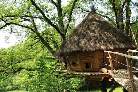 Cabane cocon, séjour romantique piscine et jacuzzi - Savigny - Boomhut