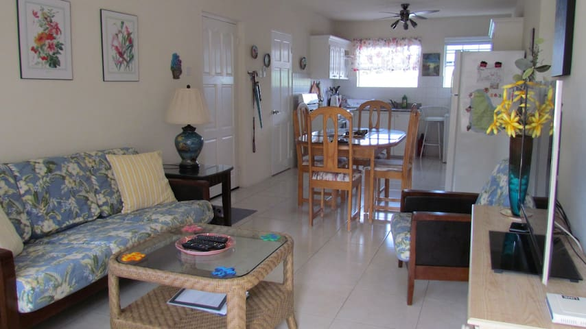 Living and dining area with kitchen.