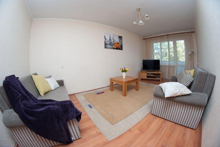 уютная квартира в центре - Homieĺ - Apartamento