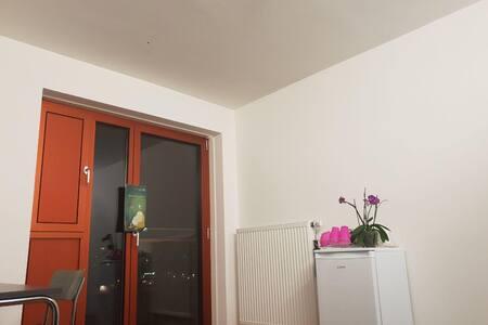 Einzimmerappartmentmit einem eigenem Badezimmer