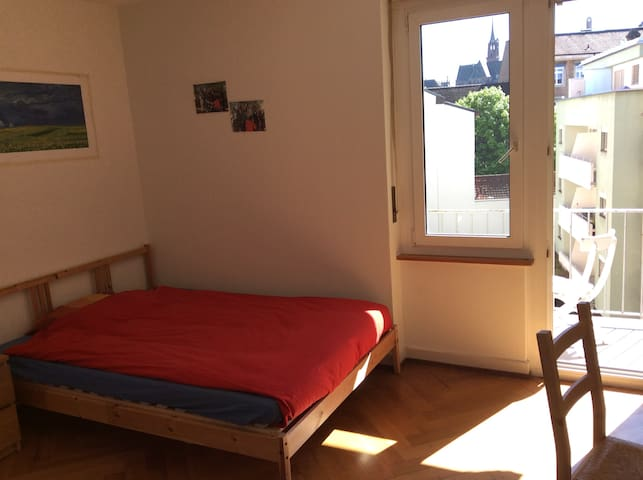 Big room with terrace - Basel - Apartmen