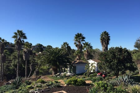 Finca Questenberg - 3 acre organic lemon farm - Fallbrook - Bed & Breakfast
