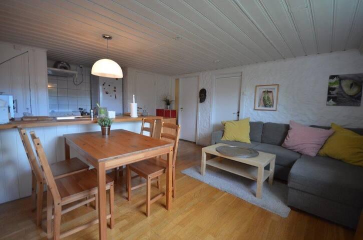 Cozy apartment close to Oslo city centre