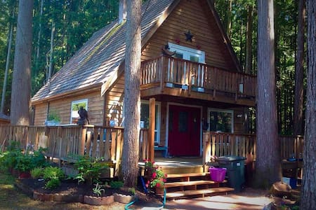 Dark Moon Cottage - Maple Falls - 家庭式旅館
