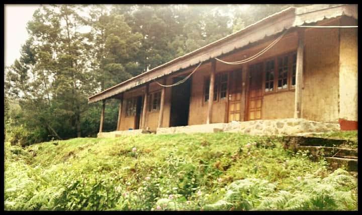 Eco Hostel - Learn Organic Farming