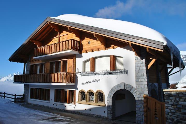 Les Petits Mélèzes •Mont-Lachaux •Ertentse
