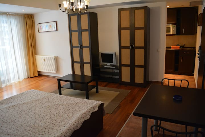 Studio in Predeal langa partia Clabucet - Predeal - Wohnung