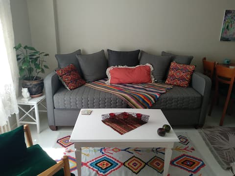 Very close to the beach, very close to public transport Private room Konak