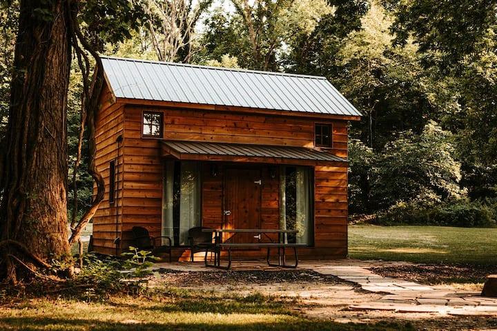 Loft Style Primitive Cabin