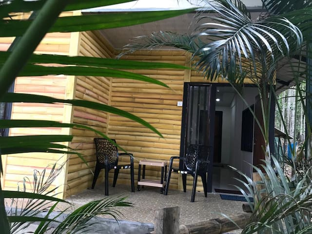 Premium 4 bedded cottage Mudumalai
