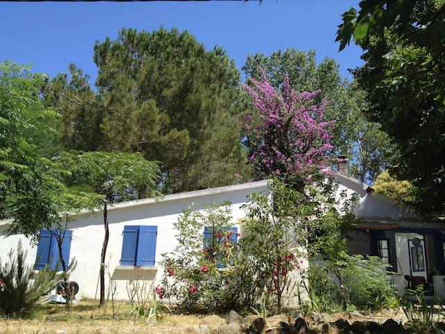 Chambre privée - Plaine Nebbiu - 10km St-Florent