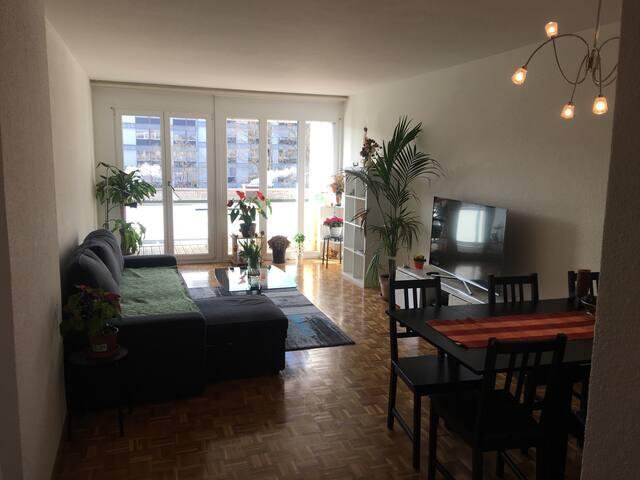 Lovely, cheap light flat. Nice cheap apartment
