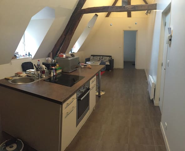 Modern flat in historic building. - Rouen - Apartment
