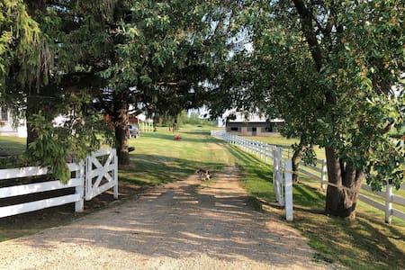 Beautiful Restored Farm on 10ac. With Amazing View